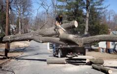Caritas Polska wspiera poszkodowanych wskutek orkanu Ksawery
