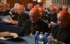 Biskupi dziękują partnerom ŚDM