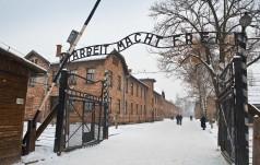 1,72 mln osób odwiedziło w 2015 r. były obóz niemiecki  Auschwitz-Birkenau