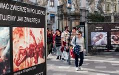 Przemyśl: służby miejskie usunęły wystawę antyaborcyjną z Rynku