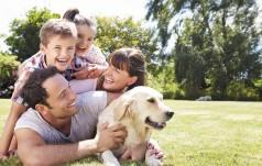 """Rząd rozpoczął prace nad programem wsparcia dla rodzin """"Za życiem"""""""