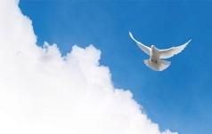 Co Duch mówi Kościołowi nad Wisłą