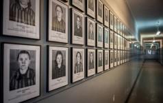 Muzeum Auschwitz: tłumy pielgrzymów ŚDM odwiedziło b. niemiecki obóz koncetracyjny