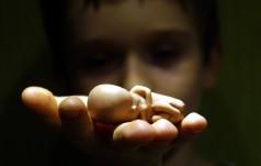 Co łączy aborcję z katastrofą smoleńską?