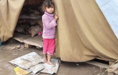 Włoski episkopat opłaci mieszkania irackim uchodźcom