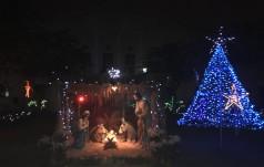 Polskie Boże Narodzenie w Indiach