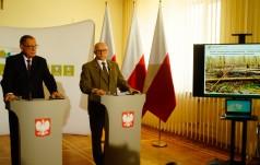Miliony martwych drzew w Puszczy Białowieskiej