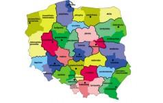Kościół bliżej wiernych – polscy biskupi o reformie struktur kościelnych
