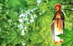 Gietrzwałd: ogólnopolskie Czuwanie Młodych nową tradycją duszpasterstwa młodzieży w Polsce