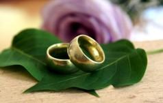 """Prezydent Niemiec podpisał ustawę o """"małżeństwie dla wszystkich"""""""