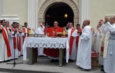 Bp Przybylski: sens głoszenia i pielgrzymowania Ewangelia wyraża w języku siania ziarna