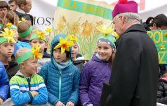 Żonkile nadziei zakwitną wiosną na Franciszkańskiej 3