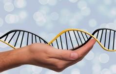 Watykan: Kościół ostrzega przed nadużyciami ze strony inżynierii genetycznej