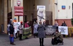 """Dlaczego """"ekolodzy"""" popierają aborcję?"""