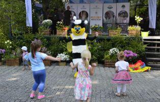 Światowy Dnień Pszczół na Wyspie Słodowej