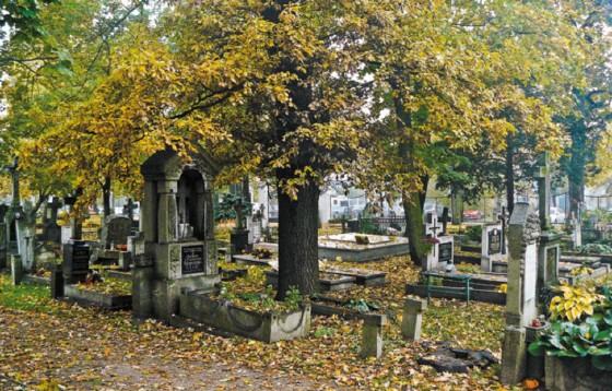 Ks. Zamaria: potrzebna jest nowa ustawa o cmentarzach
