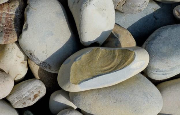 Niech ten kamień stanie się chlebem