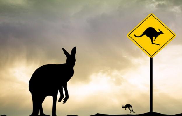 PO w krainie kangurów