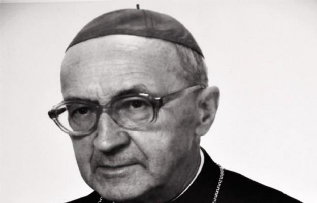 Biskup uczynków miłosierdzia