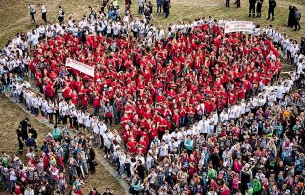 Wolontariusze ŚDM w akcji