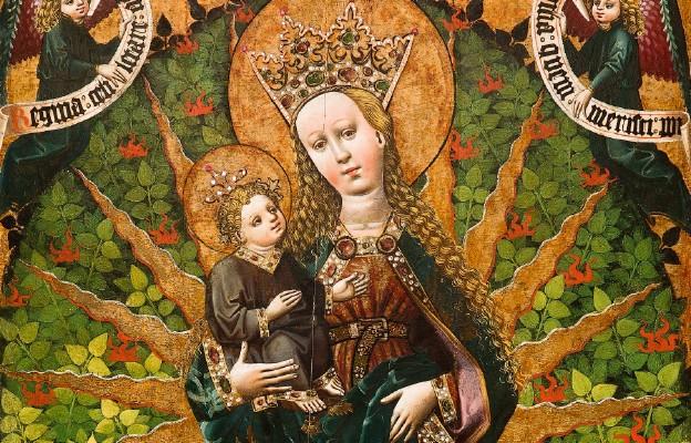 Królowa z Paczółtowic w Krakowie