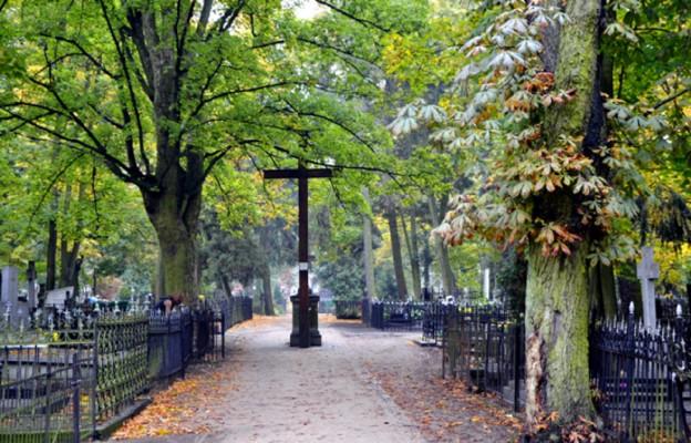 Zapomniane cmentarze toruńskie