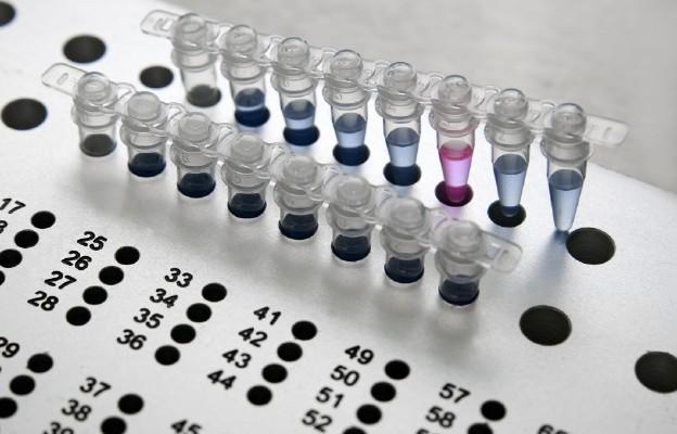In vitro – drogie nieporozumienie