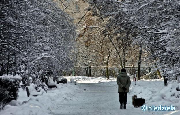 Jak przygotować się do urlopu zimowego