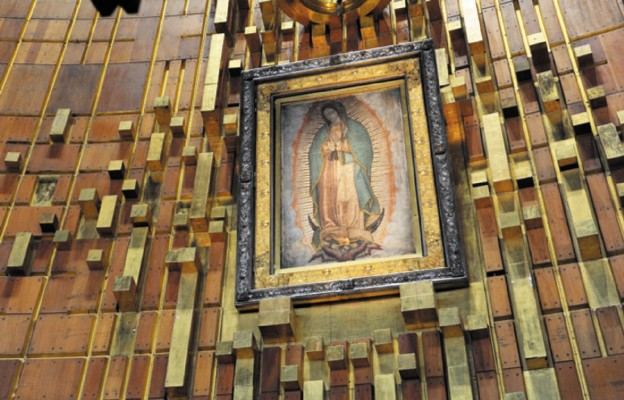 Franciszek poruszy turbiny Meksyku