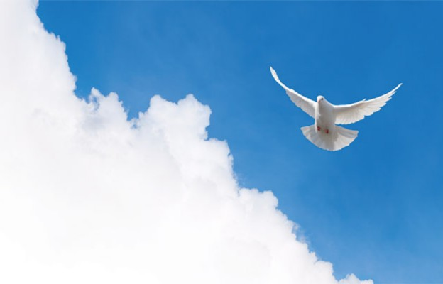 Jesteśmy świątynią Ducha Świętego