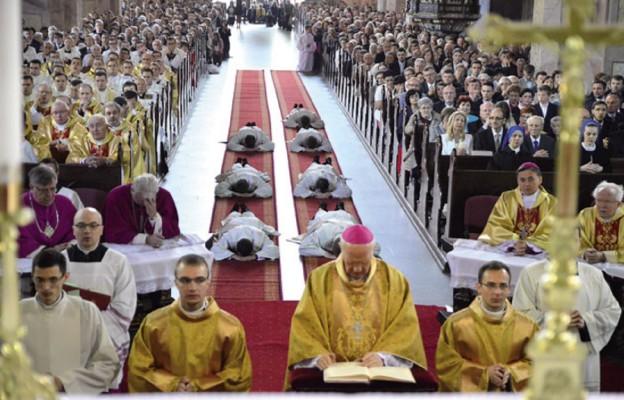 Siedmiu kapłanów dla diecezji świdnickiej