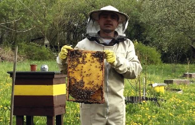 Bez pszczół zginiemy!