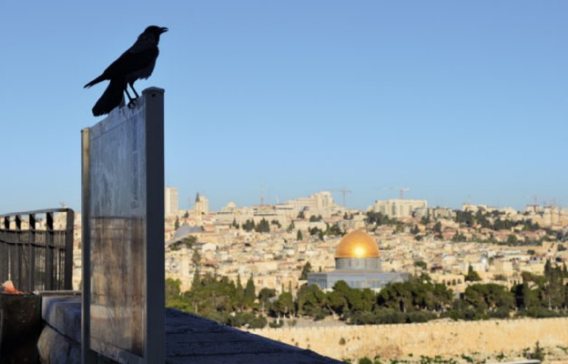 Z Tel Awiwu do Jerozolimy