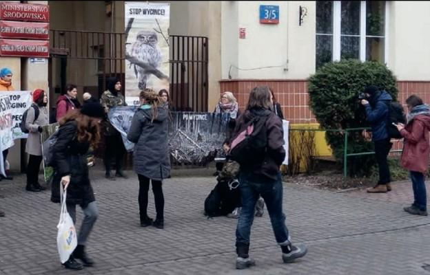 Co dalej z Puszczą Białowieską