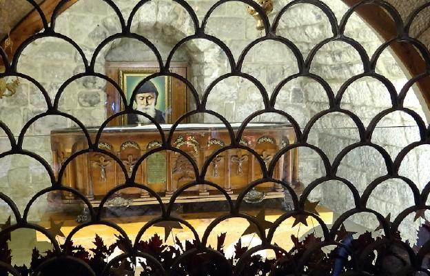 Rozłożysty cedr zdobi drewnianą skrzynię, w której pochowany jest św. Szarbel