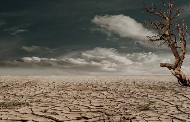 Wyjdźmy na pustynię i odnówmy przymierze