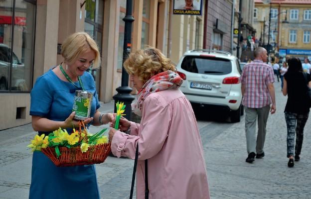Ulice Przemyśla zakwitły na żółto
