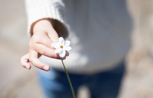 Kwiaty Boga