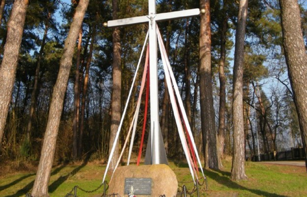 Krzyż upamiętniający pierwszą Mszę św. SChZL w lesie w Ostrówku na trasie Łęczna-Chełm