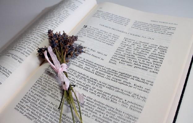 Lectio Divina to rekolekcje oparte na medytacji Słowa Bożego
