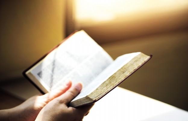 Niedziela Słowa Bożego