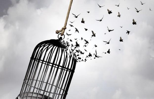 Uwolnieni