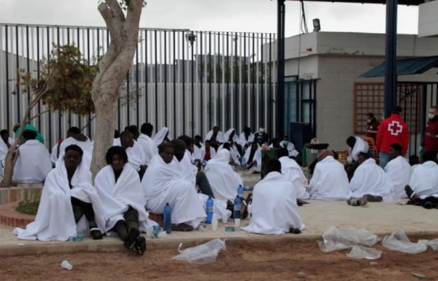 Plaga szarańczy w Afryce; przez koronawirusa nie ma jak z nią walczyć
