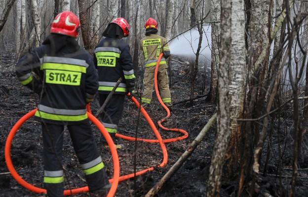 Strażacy: pożar nad Biebrzą opanowany, trwa dogaszanie, ale akcja się nie kończy