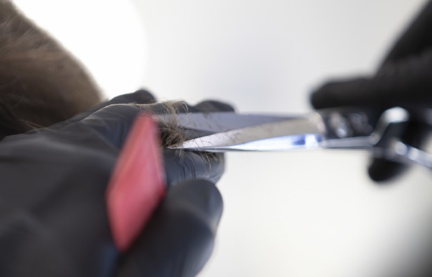 Wieluń/ 60 osób mogło zarazić się koronawirusem w salonie fryzjerskim