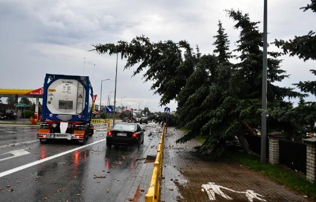 PSP: prawie tysiąc interwencji związanych z silnym wiatrem i opadami deszczu