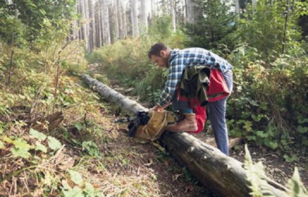 Prywatny las z unijną dotacją