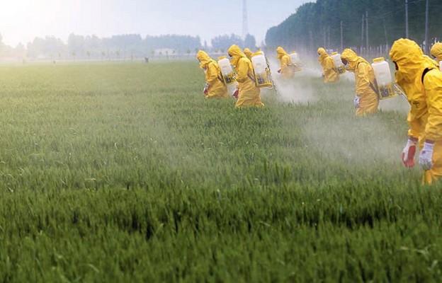 Pestycydy ukryty wróg