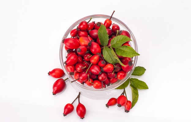Owoc głogu i dzikiej róży
