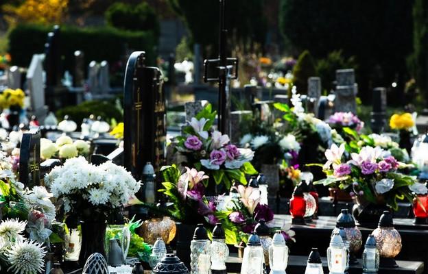 Rzecznik rządu: w piątek ogłoszenie decyzji w sprawie cmentarzy